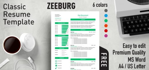 Wonderful Zeeburg U2013 Classic Resume Template